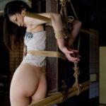 エッチ好きそうな女が緊縛されてエロポーズで誘ってる画像の素晴らしさを実感するスレ[33枚]
